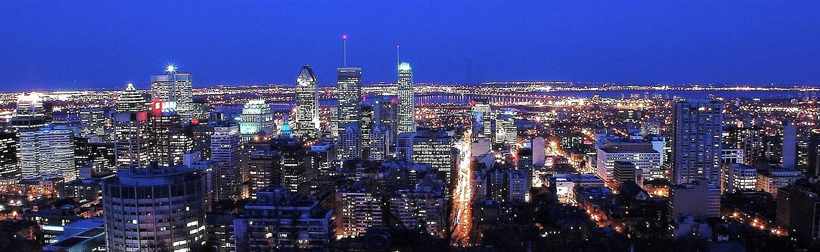 montreal bred (2)